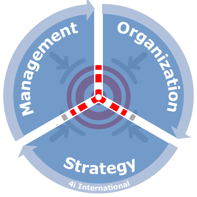 Management Organization Strategy